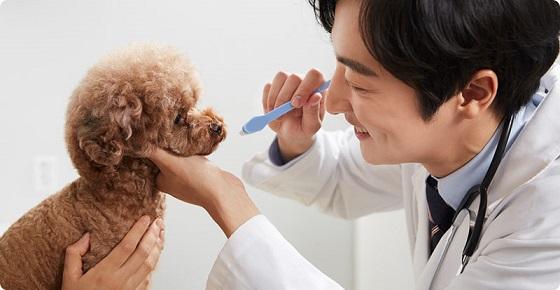 宠物医院哪家好?