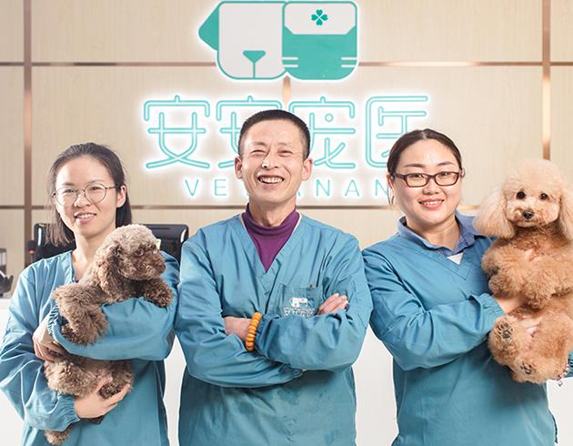宠物老年病科